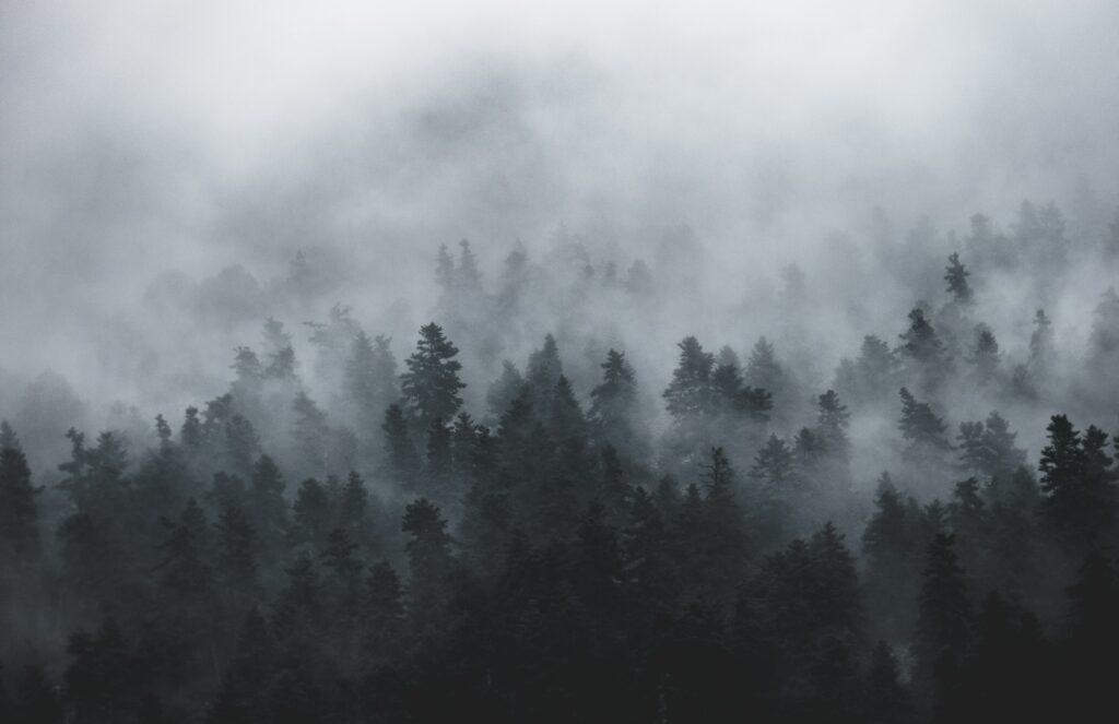 Niflheim - Home of Mist