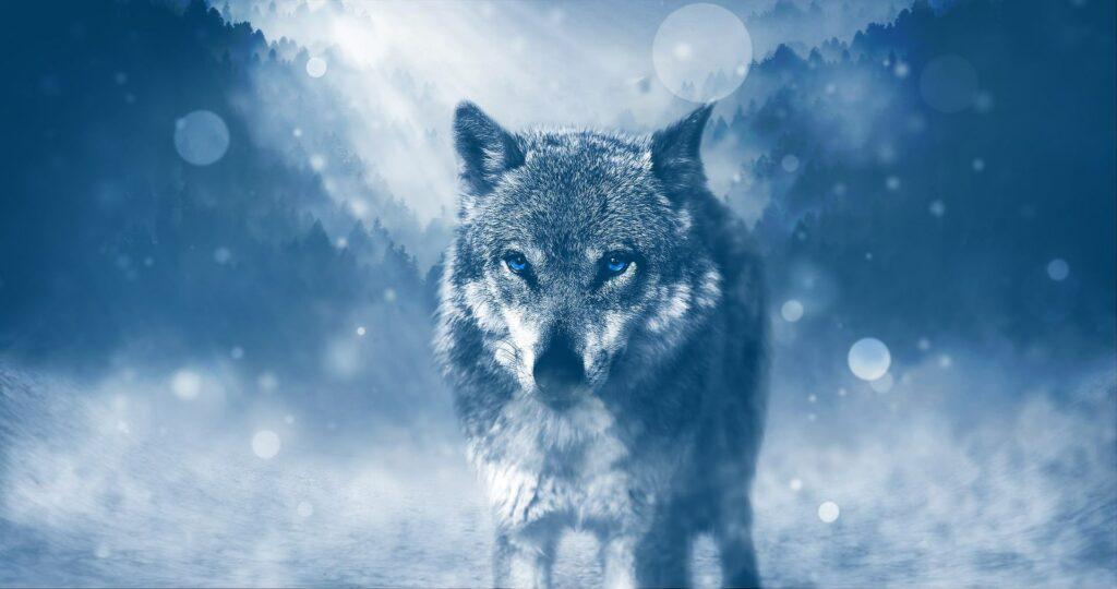 The Amarok Wolf - Inuit Mythology