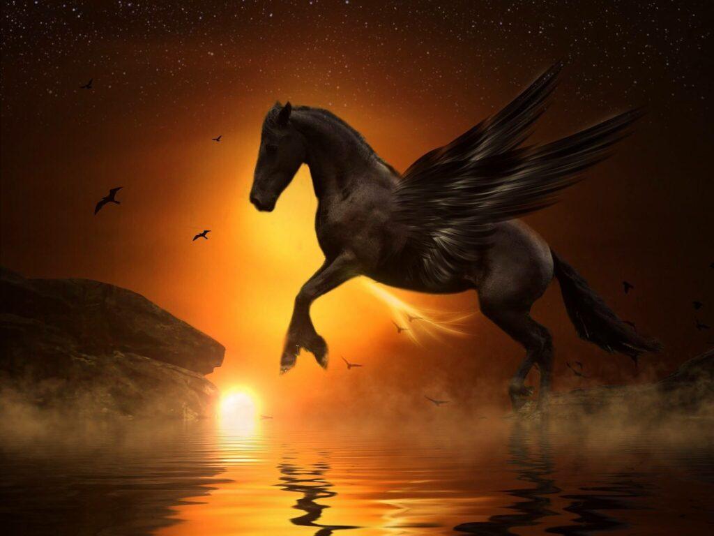 Ceffyl Dŵr is a shape shifting water horse in Welsh mythology