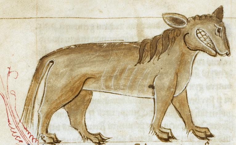 The Crocotta is a mythical wolf-dog-hyena hybrid