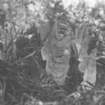 What are the Cottingley Fairies